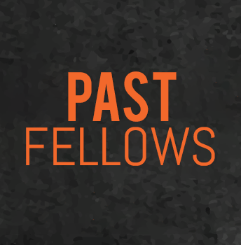 Past Fellows